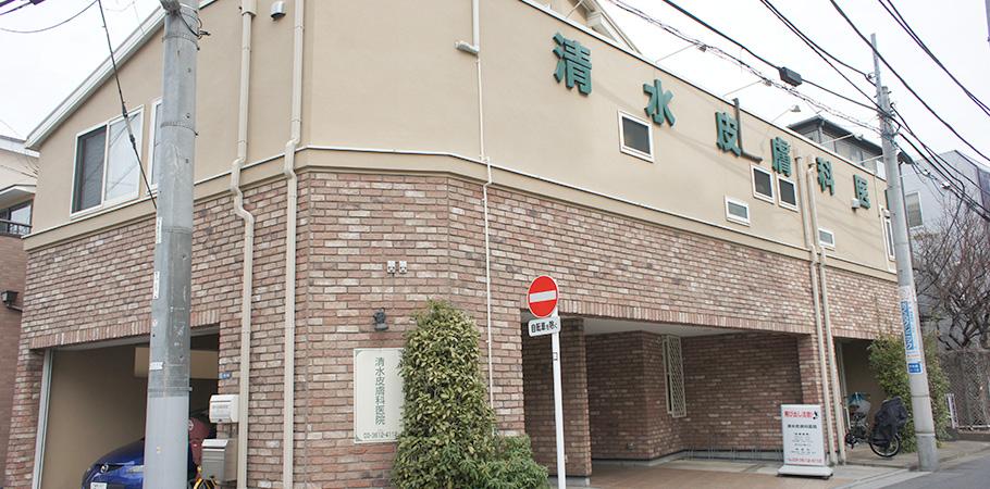 https://shimizu-hihukaiin.jp/wp-content/uploads/2018/05/shimizu-top.jpg